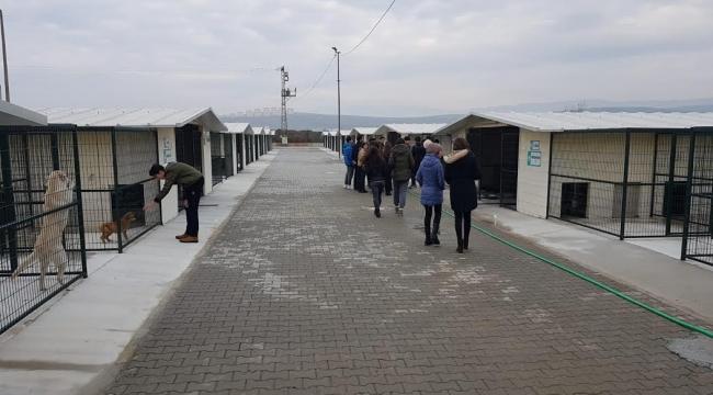 Akhisar Barınağı Öğrencileri Ağırladı