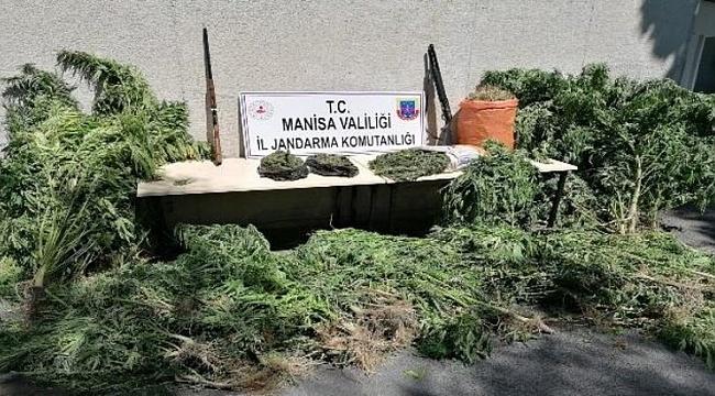 Akhisar'da uyuşturucu operasyonu: 1 gözaltı