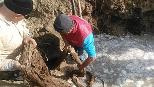 İçme Suyu Hattından 20 Metrelik Kunduz Çıktı