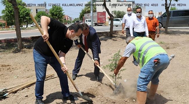 Akhisar'da 1000 fidan toprakla buluştu