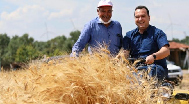 Atalık Karakılçık Buğdayı Akhisar'da Hayat Buldu